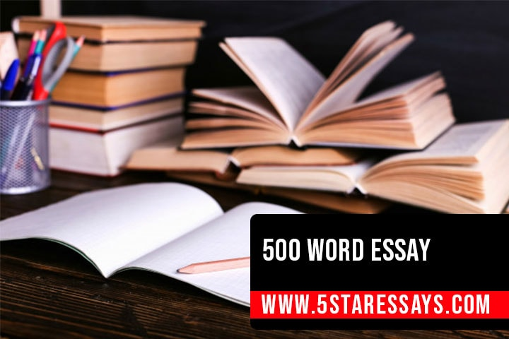 Beginners Guide to Writing a 500 Word Essay