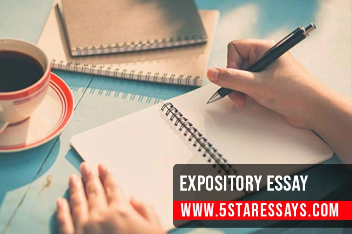 Expository Essay - A Complete Guideline to Help You Write