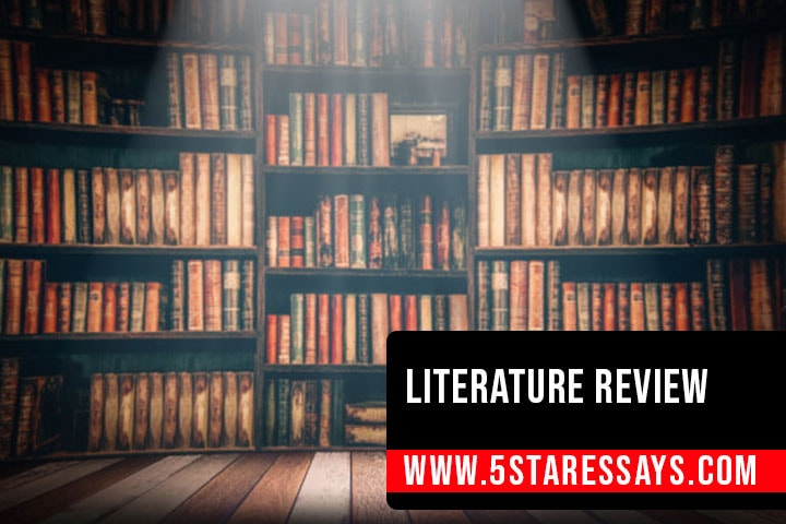 How to Write a Literature Review: Steps and Outline