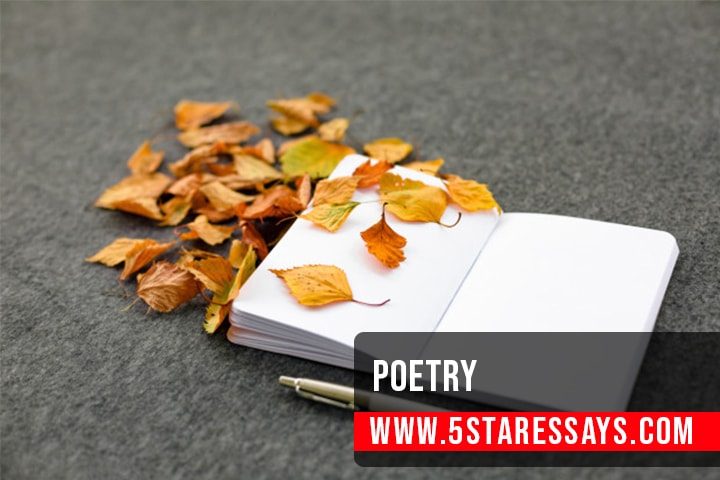 How To Write Poetry - 7 Fundamentals and Tips