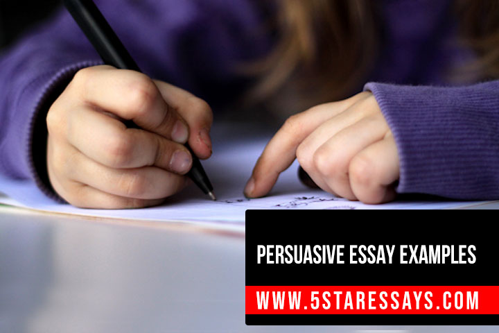 Free Persuasive Essay Examples to Help you Get Started